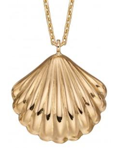 Mon-bijou - D349 - Collier coquillage en or 375/1000