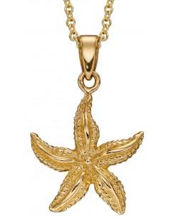 Mon-bijou - D2258 - Collier étoile de mer en or 375/1000